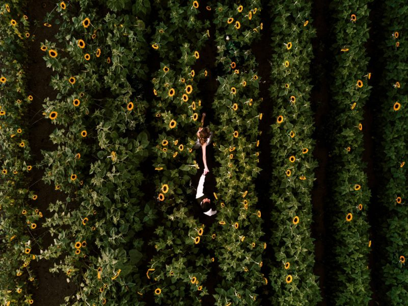 seattle drone wedding photographer aerial