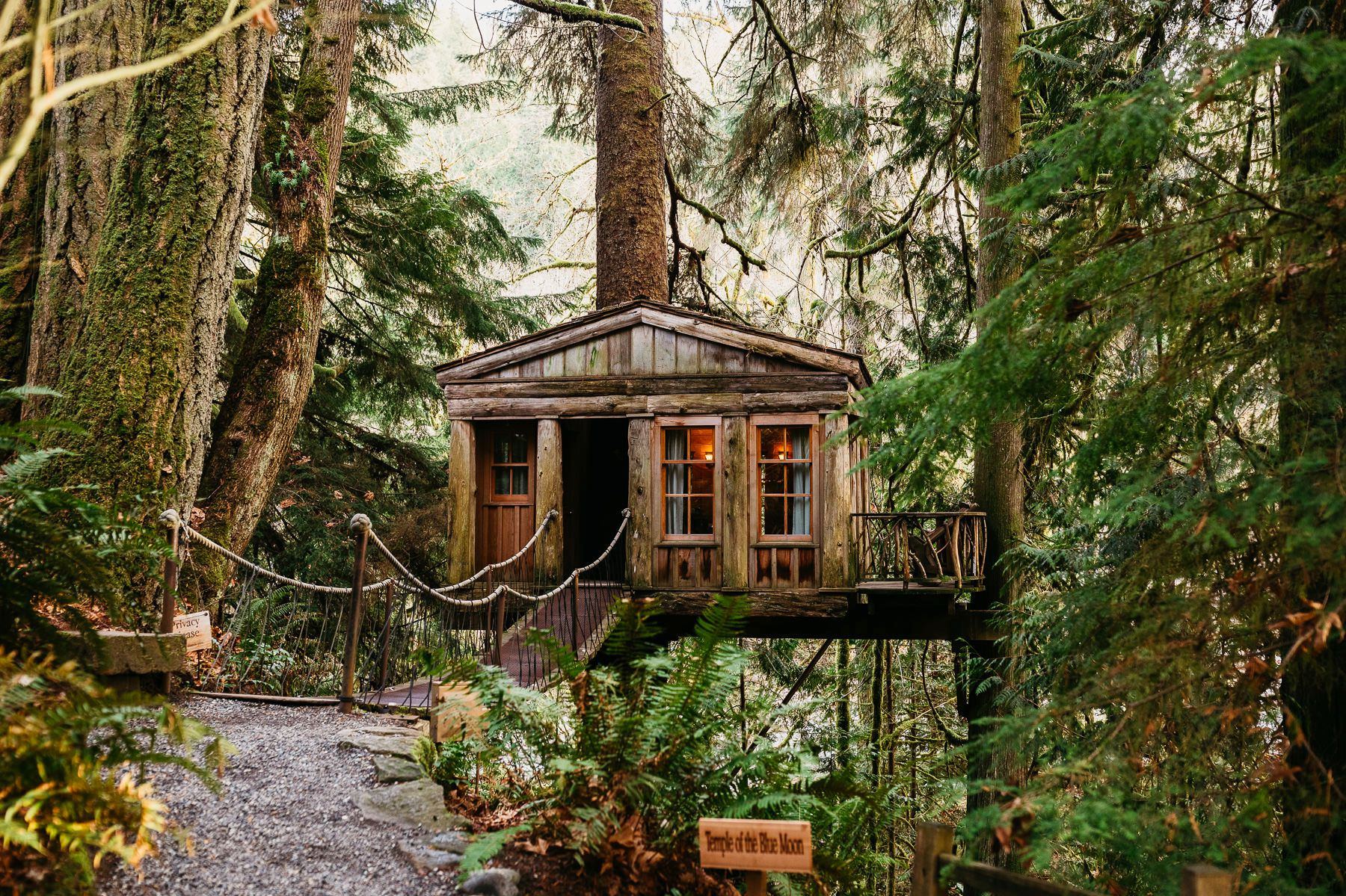 treehouse point wedding in winter 1