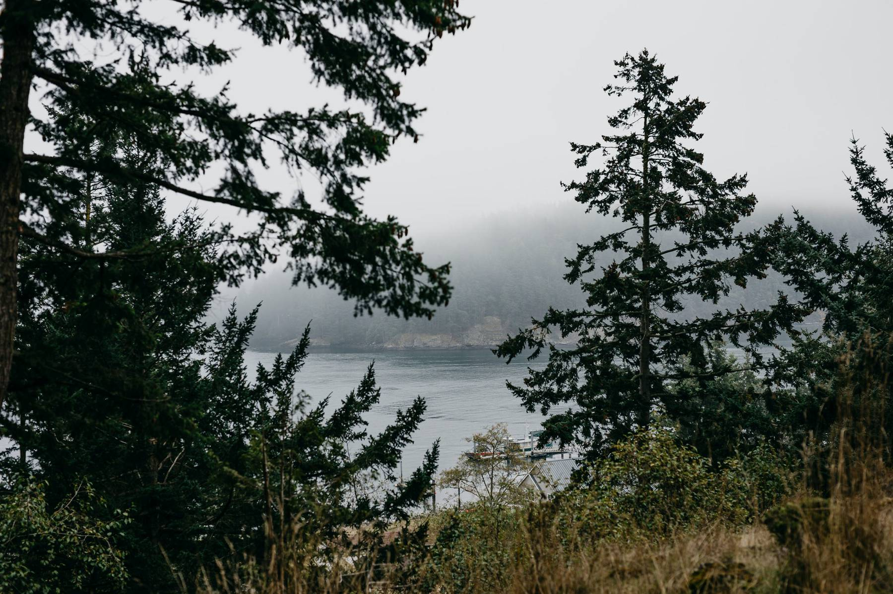 doe bay orcas island elopement
